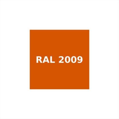 RAL-2009.jpg