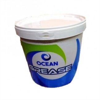 -OCEAN~1.JPG